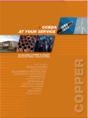 CCBDA at your service cover
